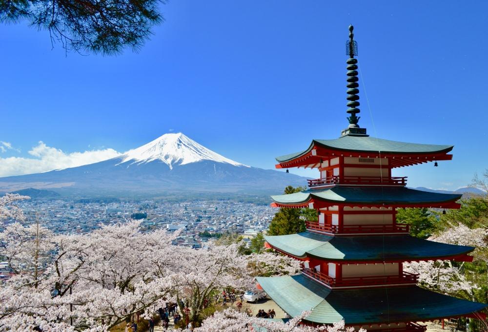 Chureito Pagoda in Spring
